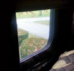 Window with plastic