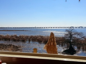 View of the bay from Ed's Seafood Shack