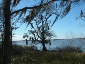 Bay area across from Mobile, AL