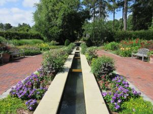 One of the many gorgeous areas at Norfolk Botanical Gardens