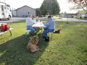 After our guests left, the family continued to enjoy the outside while playing cards. The pups kept watch.