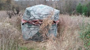 The hunting blind