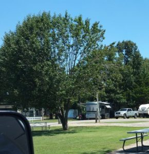 Our empty site as we pull out of the campground
