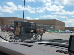 Surprised by an Amish buggy parking next to us