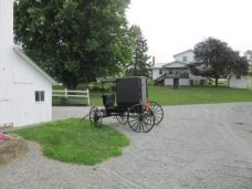 Hershberger buggy - OH