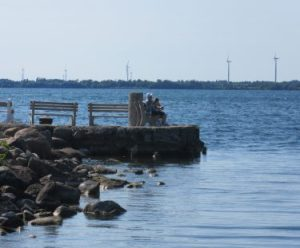 Fishing folks with the wind turbines in the background
