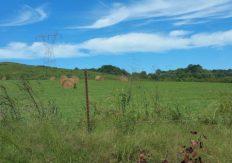A hay field