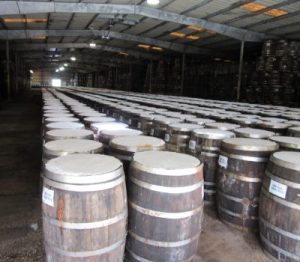 Rows of barrels in the storage area