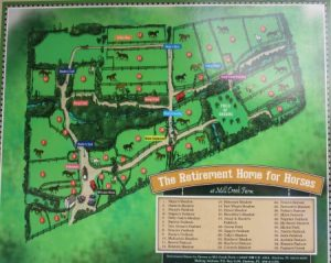 Layout of the horse retirement farm