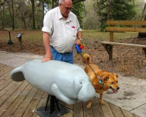 Jim introducing Chewie to a manatee, in case we met others