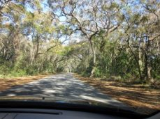 Headed toward Clam Creek Picnic area