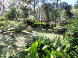 1 of 2 pictures of the cemetery - one of the most beautiful I've seen