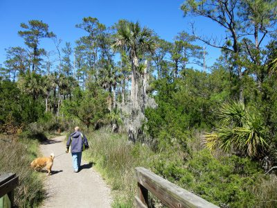 Hiking Sandpiper Trail toward the Avian Trail