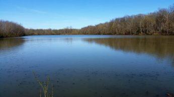 The lake (reservoir)