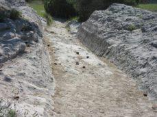Oregon trail ruts still preserved today
