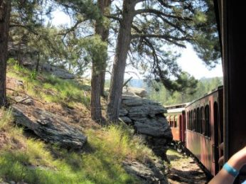 Train puts us at arms-reach of rocks and trees.