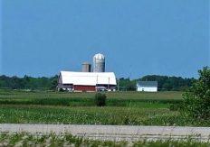 Love the farms
