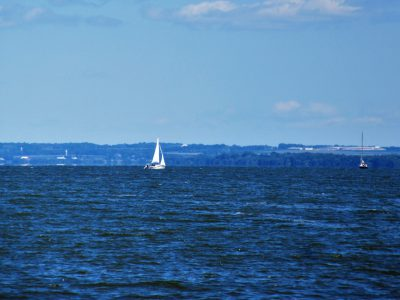 Lots of lovely sailboats out