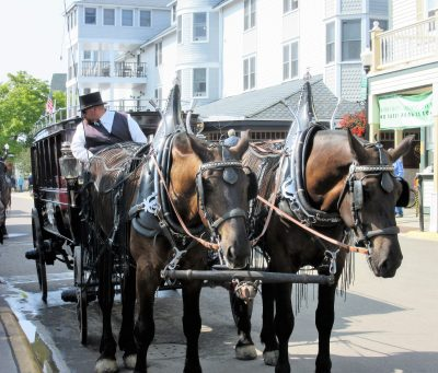 Horse-drawn taxis