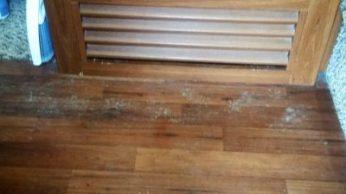 Inside front door floor - so dirty