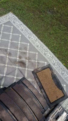 Door looking at steps and yard rug - yuck!