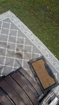 Door looking at steps and yard rug - yuck!