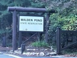 Walden's Pond, made famous by Thoreau